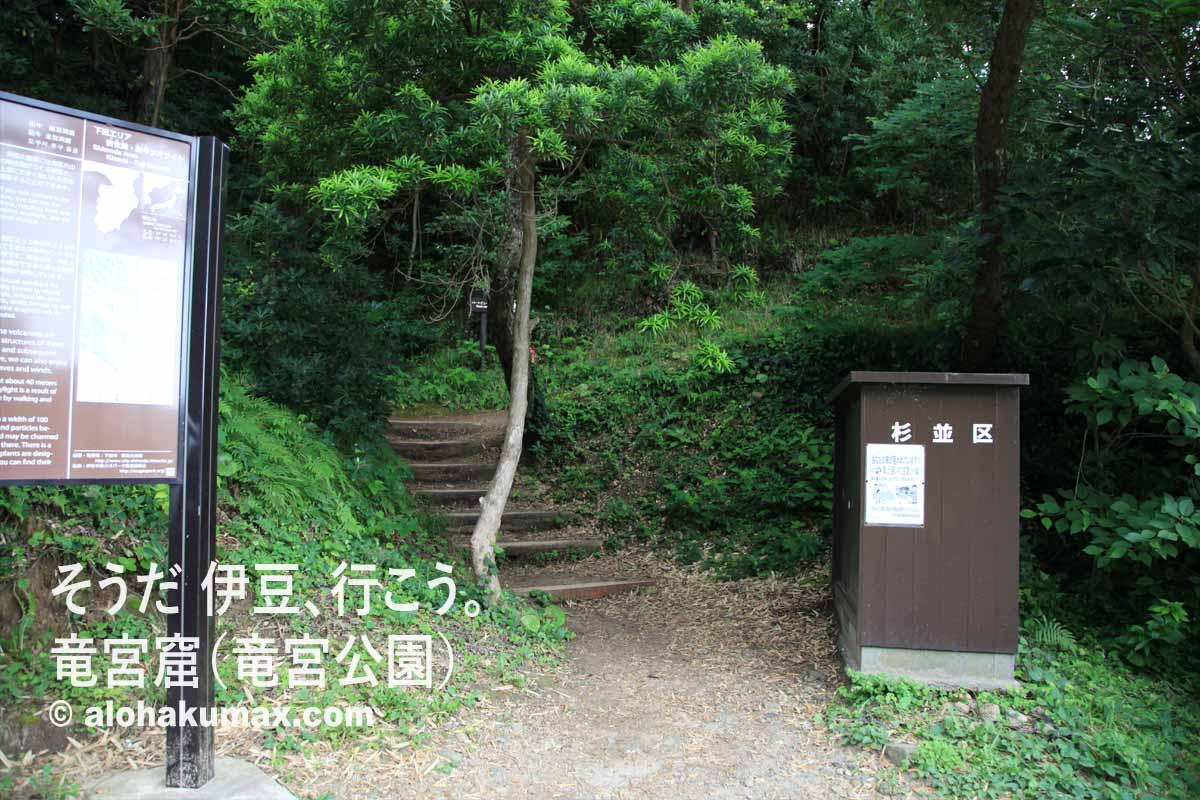 崖上へ続く階段