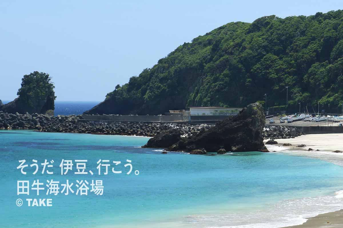 ビーチ内の大きな岩