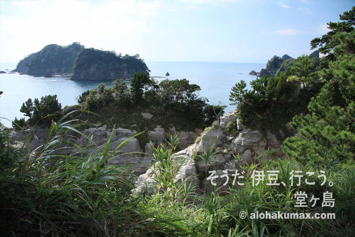 三四郎島(象島)