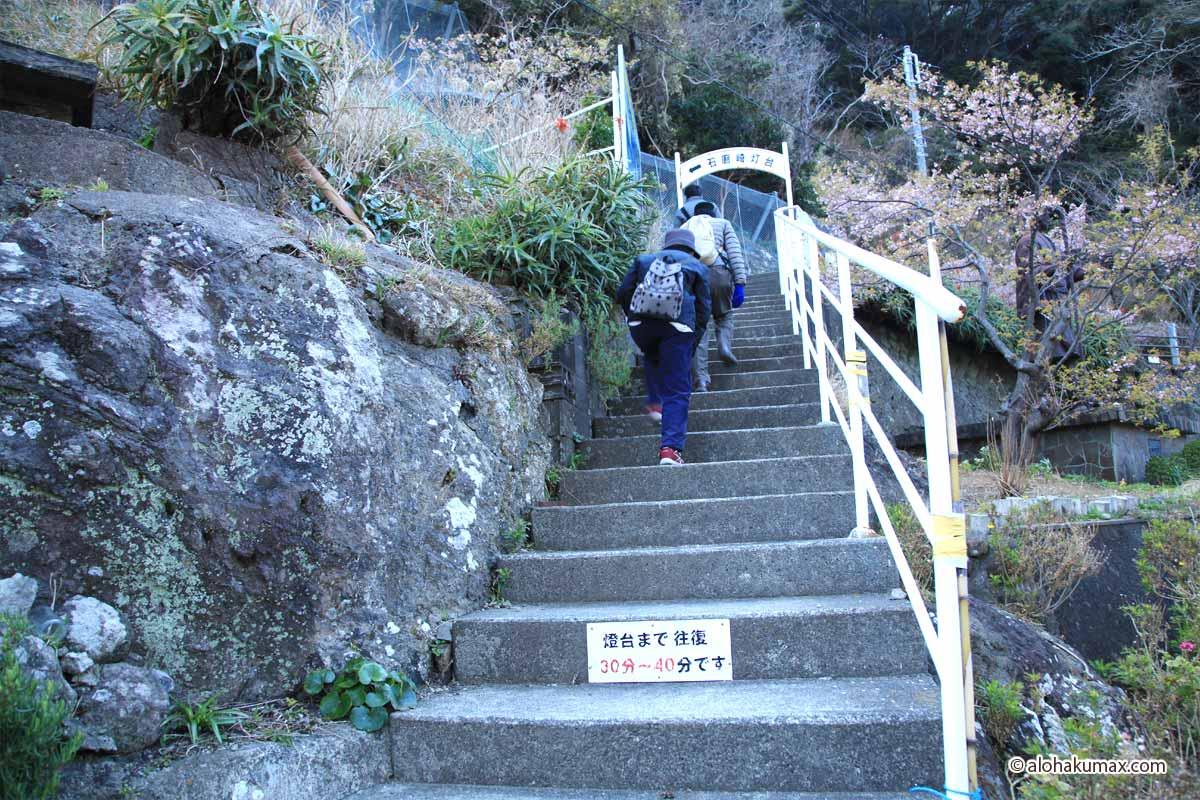 駐車場から伸びる階段