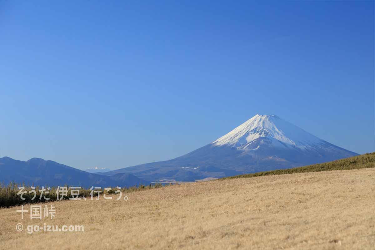 十国峠からの富士山 その2