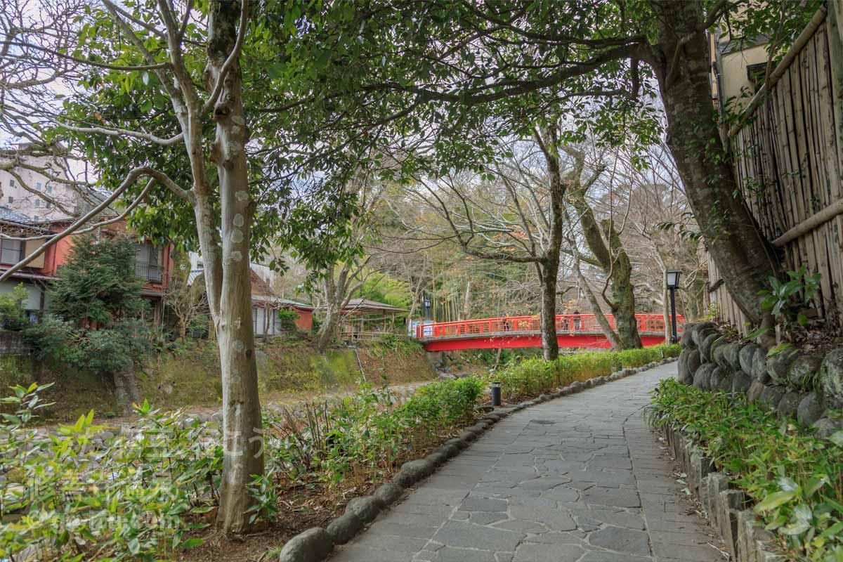 桂川沿いの小路