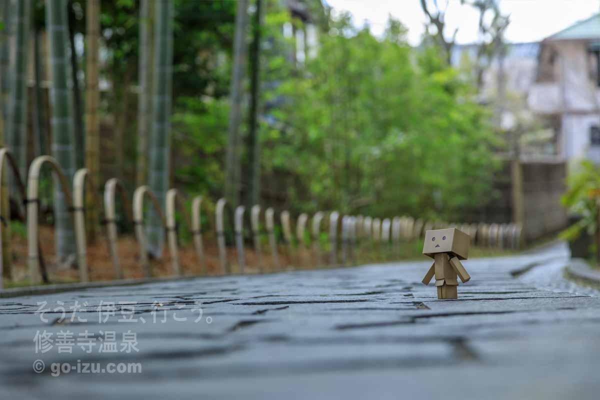 竹林の小径とダンボー