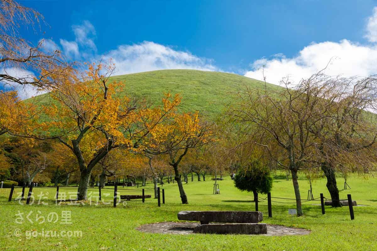 大室山はスコリア丘(さくらの里より)
