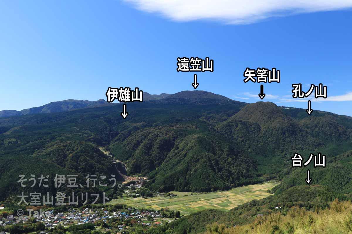 東伊豆単成火山群の一部