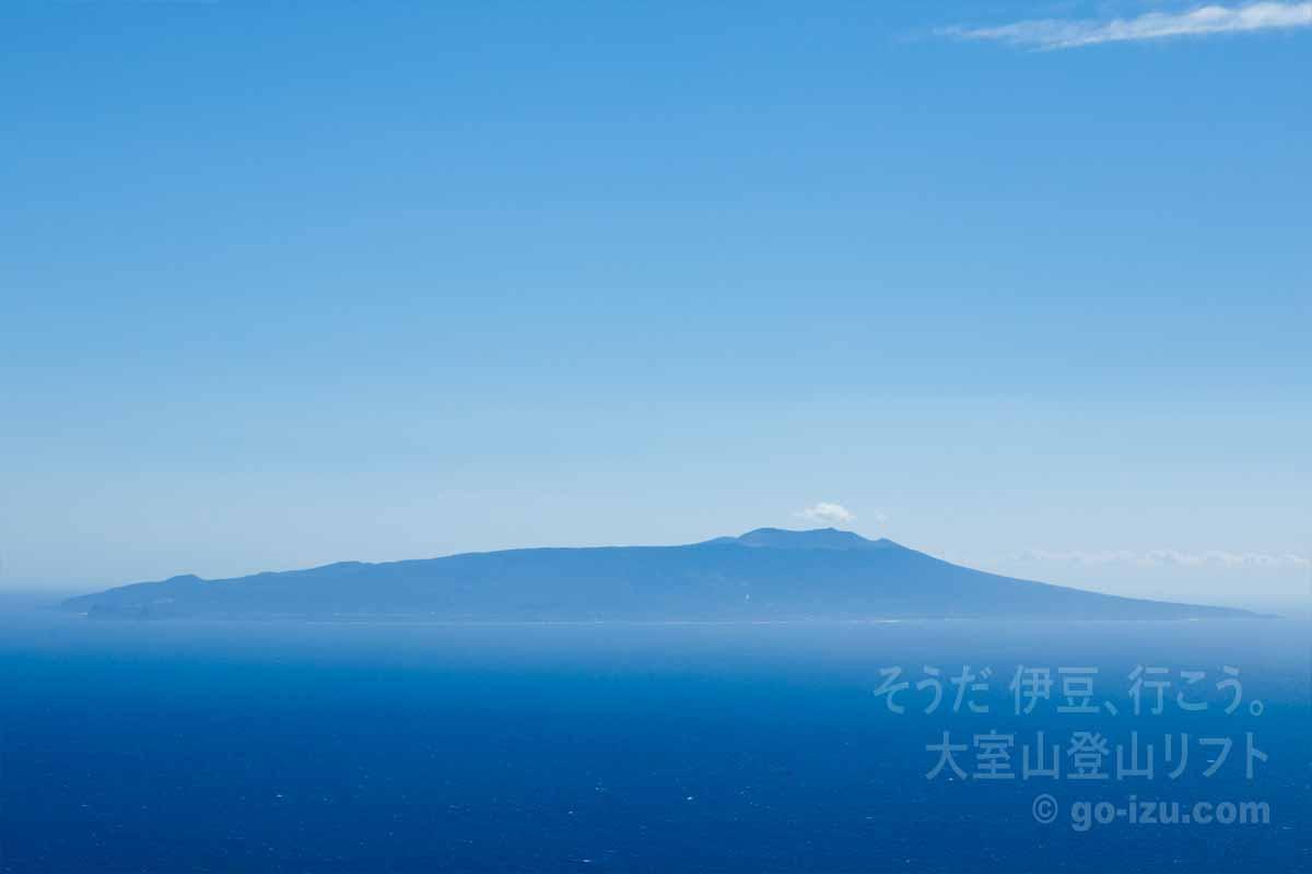 大島最高!