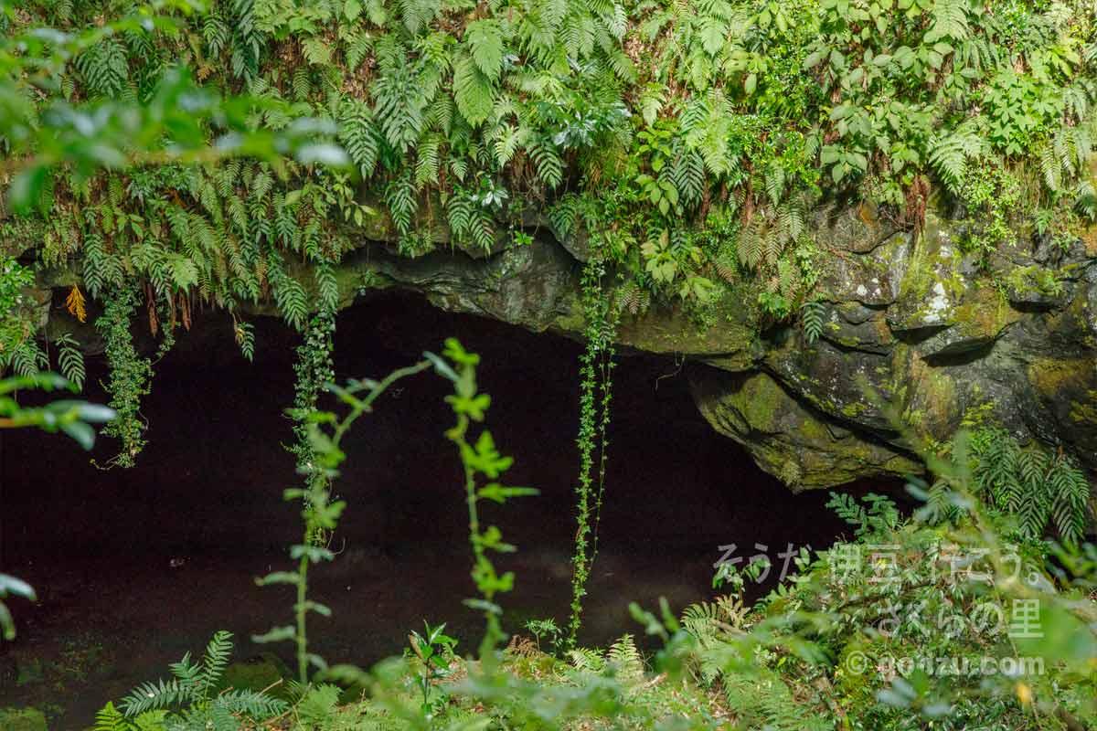 洞穴のアップ